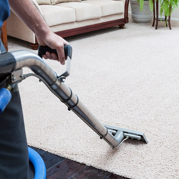 Gulf Coast Carpet Care professional cleaning carpets with a steam cleaning wand.